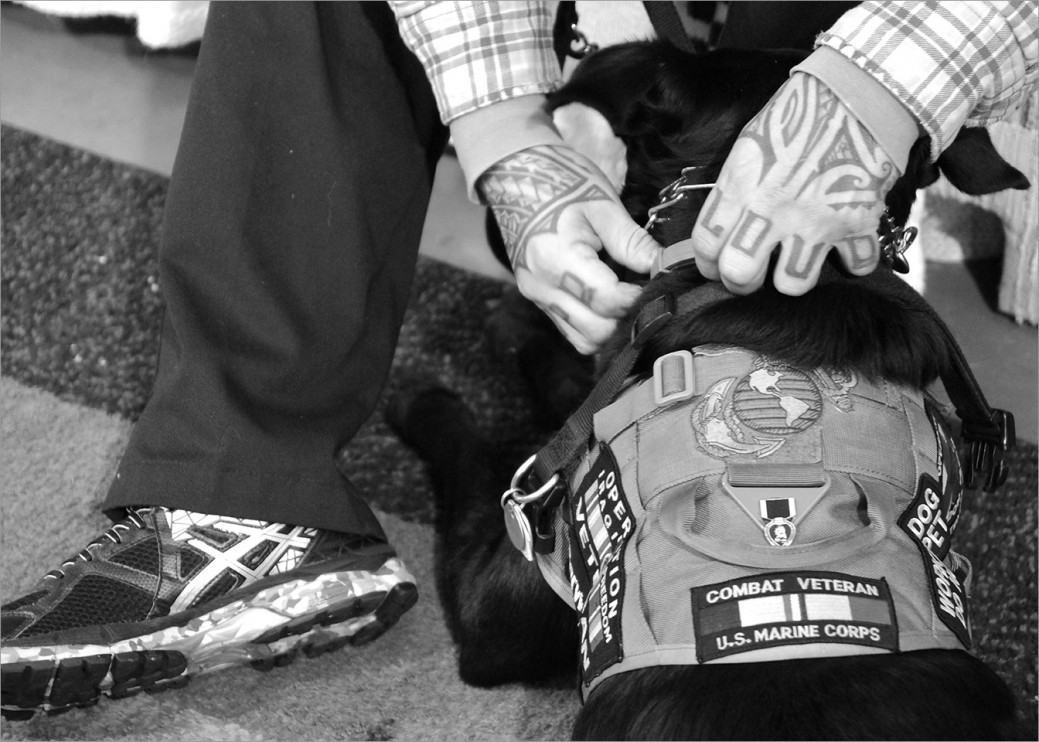 "US Marine Corps veteran Emilio Gallego adjusts the collar of his service dog Samson. They are together 24/7. Emilio is engaging more with people when they go places and he says it's good for advocating too. Many people don't understand the benefits service dogs provide for people with ""hidden wounds,"" such as PTSD or Traumatic Brain Injury."