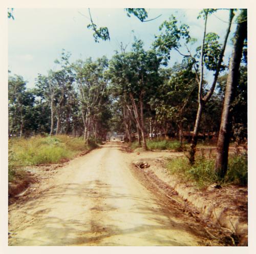 IN6_DENNY_road_img033